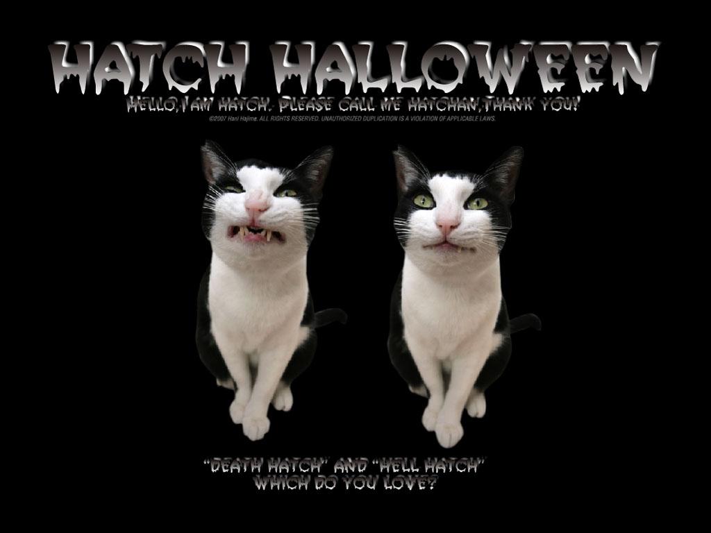 Halloween-S.jpg