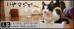 banner081031.jpg