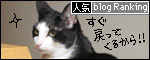 banner081127.jpg