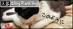banner081202.jpg
