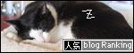 banner090107.jpg