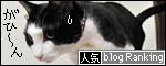 banner090127.jpg