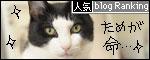 banner090504.jpg