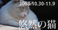 yuuzen200-100.jpg